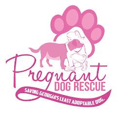 Pregnant Dog Rescue