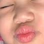 Quilaton Family
