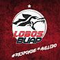 Lobos BuapTV