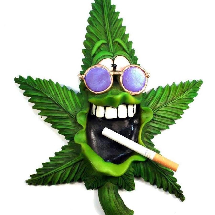 I конопля приколы марихуану поговорки про