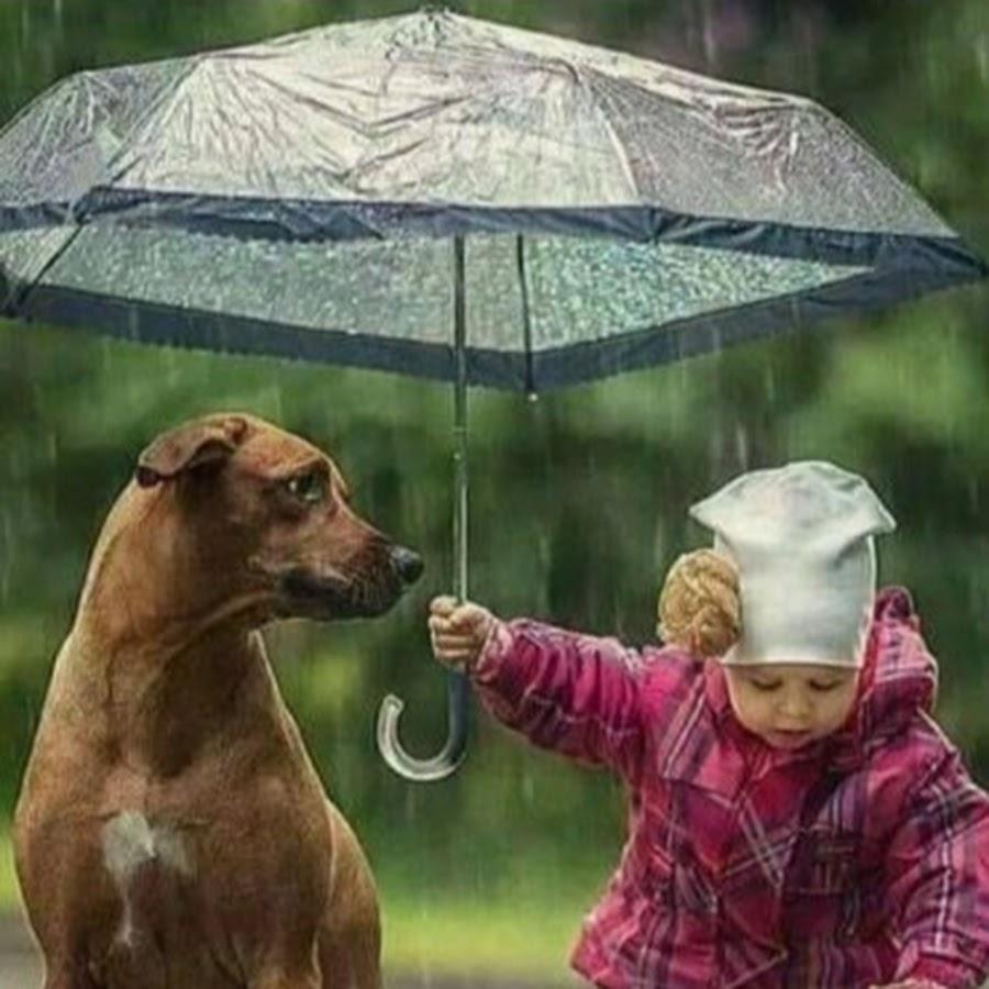 фотографии на тему доброта спасет мир одна