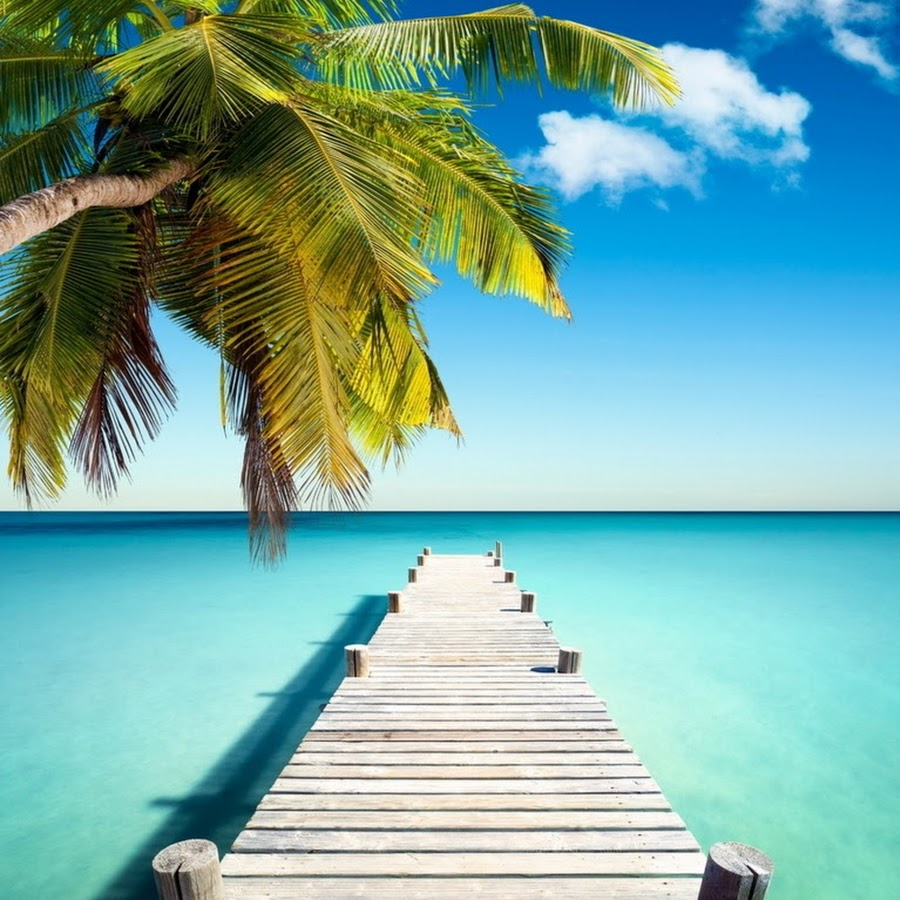 вкладываются сырое мобильные картинки лето местами