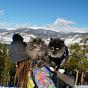 Kitsune Siberian Forest Cats