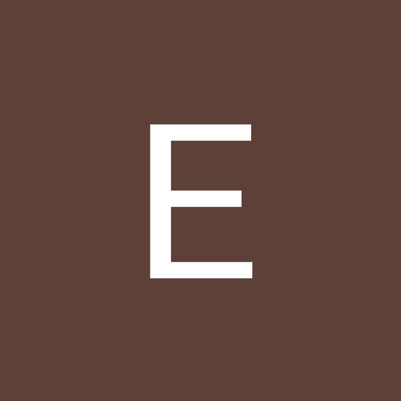 E.S.I.C CO.