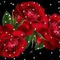AdelaWolfe34562 - @AdelaWolfe34562 - Youtube