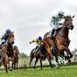 Czech Horse Racing