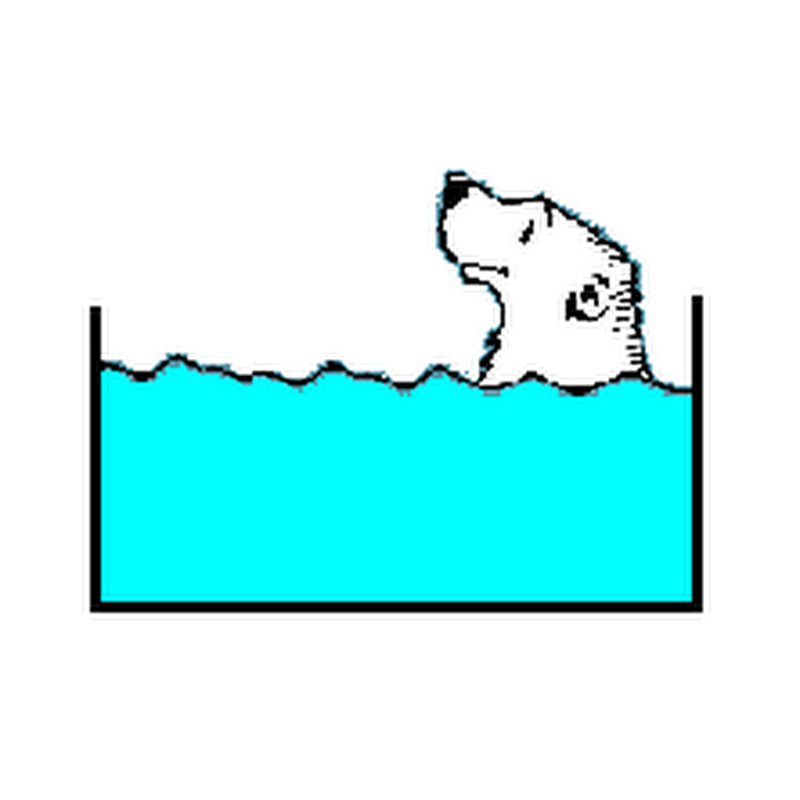 Un ours dans l'aquarium (un-ours-dans-laquarium)