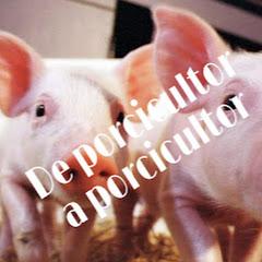 De porcicultor a porcicultor