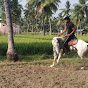 Godclinton horsemanship vellore (godclinton-horsemanship-vellore)