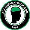 Auladeanatomia. com