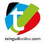 TxingudiOnline