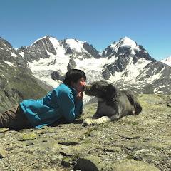 Alps Slow Lifeーアルプス自然生活