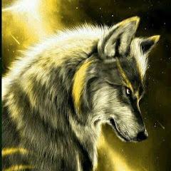 ༒Lobo teorias Doradas༒