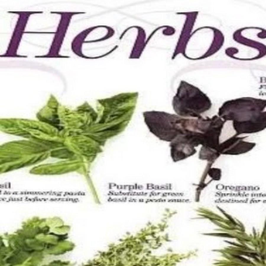 Maximum Herbs