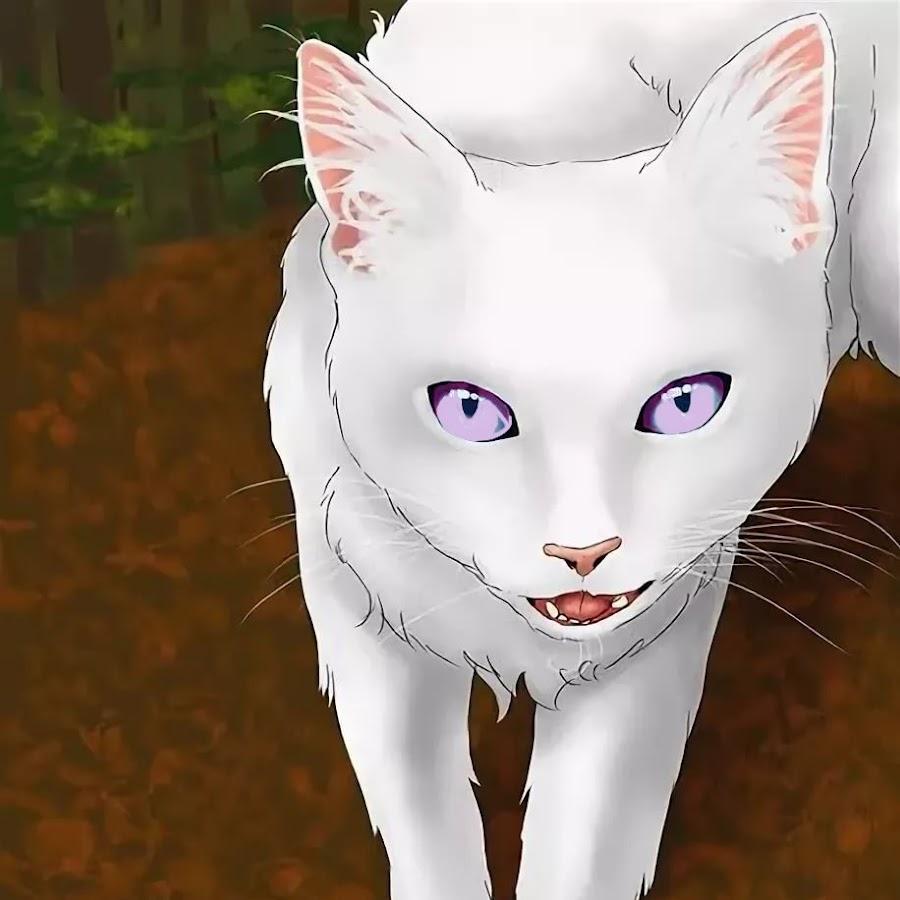 картинки котов воителей белолапка временем