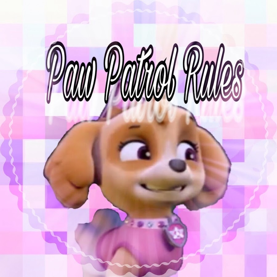 paw patrol rules  youtube