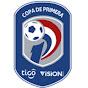 Resumen Copa Sudamericana