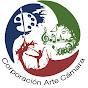 Orquesta Arte Cámara - Youtube