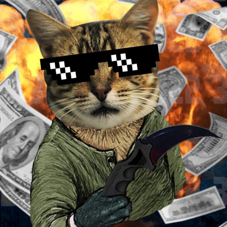 картинки для аватарки в стиме коты потребовали властей амнистии