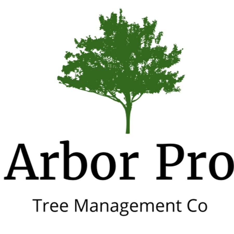 45 Arbor Oak: Arbor Pro Tree Management Co. LLC