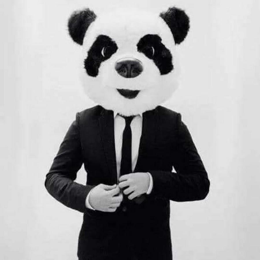 фотографе картинки на аву маска панды на человеке кандидатов место главы