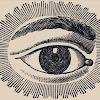 The Logical Eye