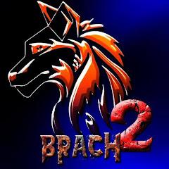BRACH 2