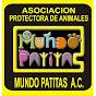 Mundo Patitas AC Asociacion Protectora de Animales