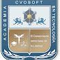 CVOSOFT IT Academy