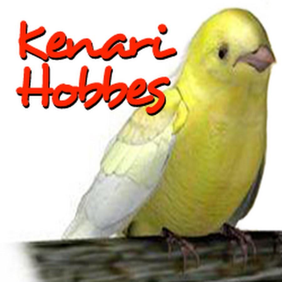 Kenari Hobbes