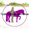 Tash Horse Experience