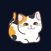 Cats Wiz