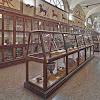 Museo Civico Archeologico Bologna