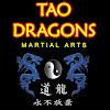 Tao Dragons Martial Arts Academy