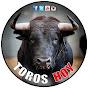 TOROS ESPAÑA SALVA