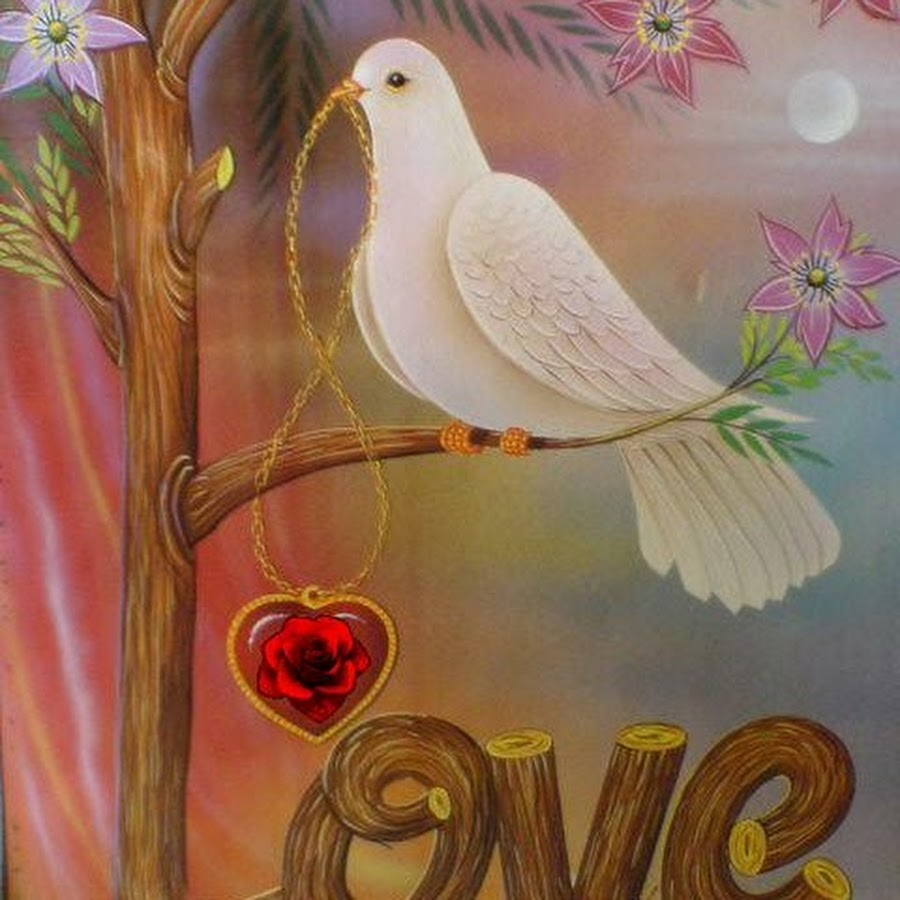 красивые открытки с голубями доброго утра конце концов