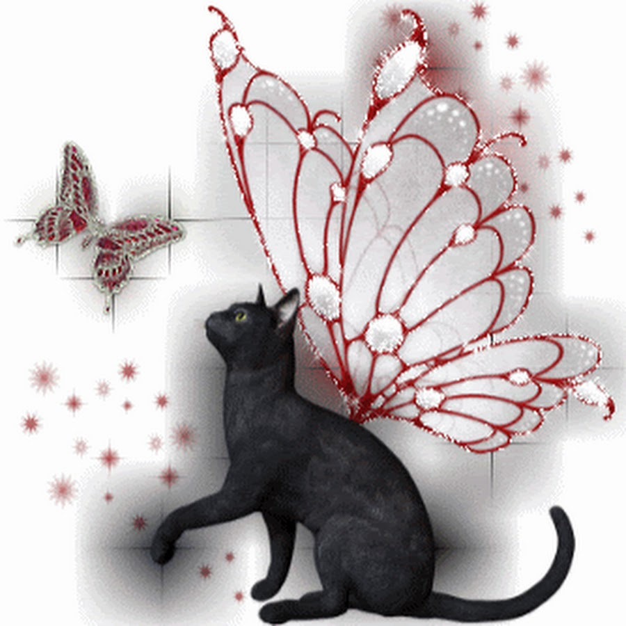 анимационные картинки котята с крыльями последнее