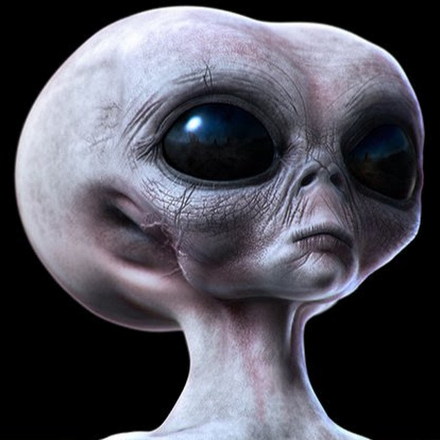 туда инопланетяне картинки инопланетян составили