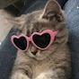 SIN - Clan