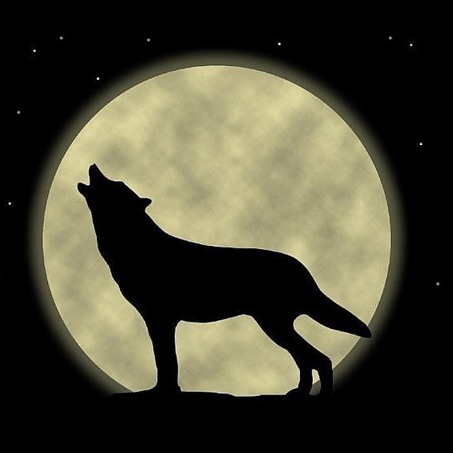 собака воет на луну картинка букву четырех