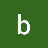 bartDIY