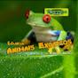 Tortuga PetShop - Animais Exóticos