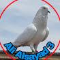 AliAlsayad 3