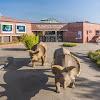 LWL-Museum für Naturkunde mit Planetarium