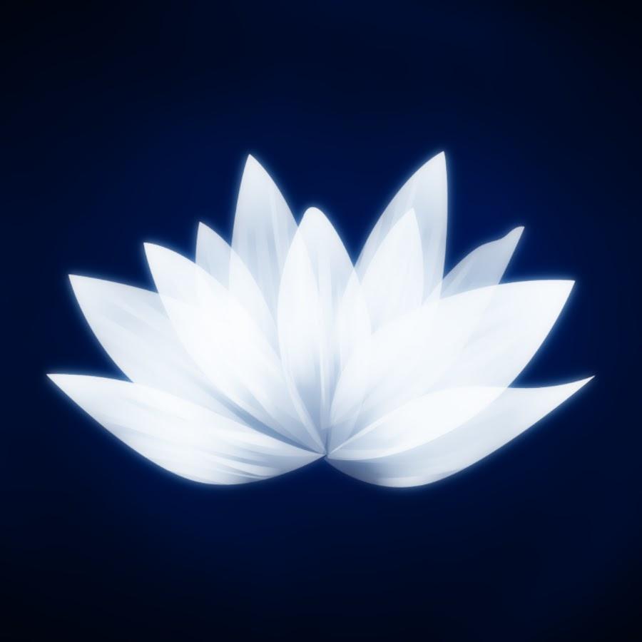 Dr. White Lotus - YouTube