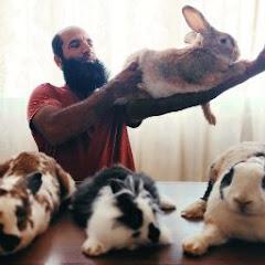 ارانب الخير المختاره