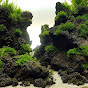 BD Aquascaping - Youtube