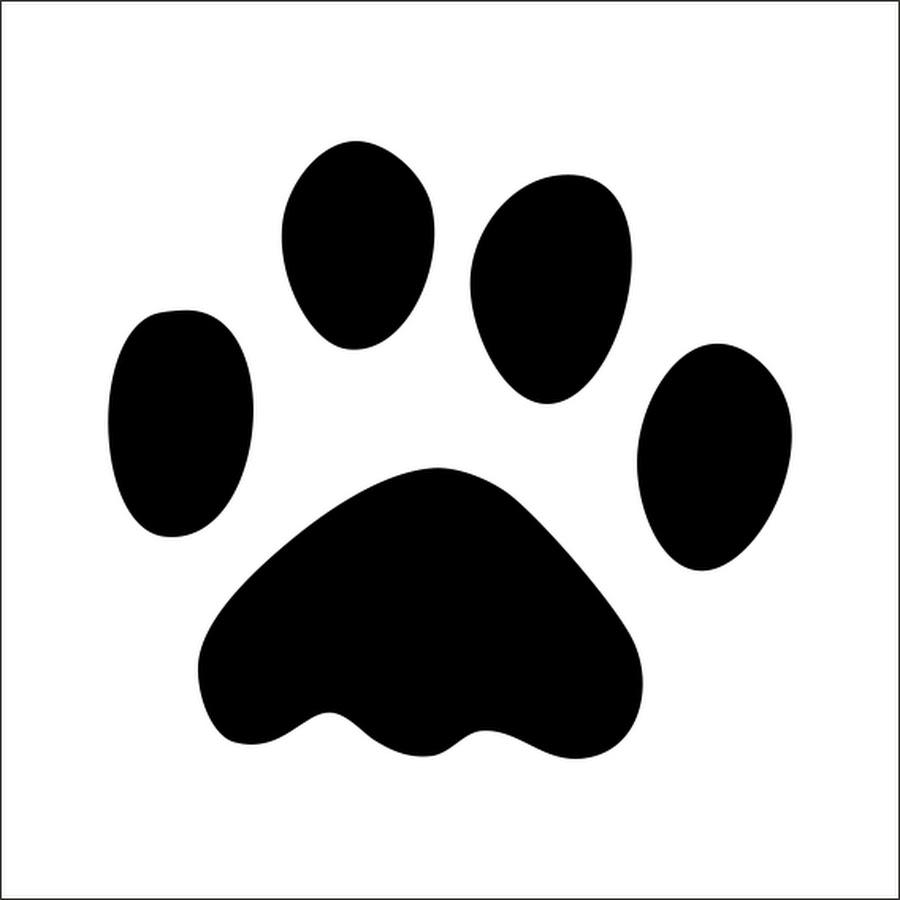 Картинки следов кошек