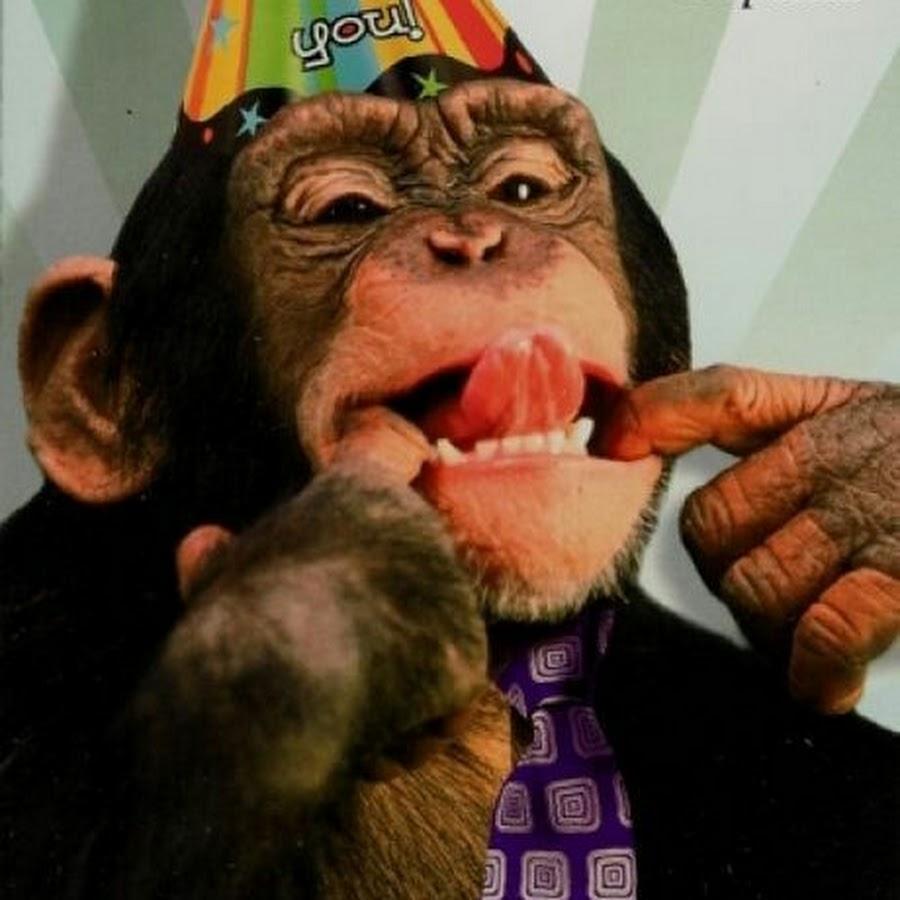 тем как открытка с тремя обезьянами как испытывал