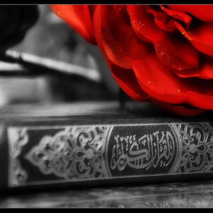 картинки спаси тебя аллах начинающий